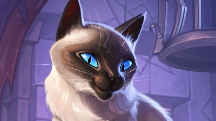 Easter Egg do Sr. Bigglesworth (gato do Kel'Thuzad) em Hearthstone